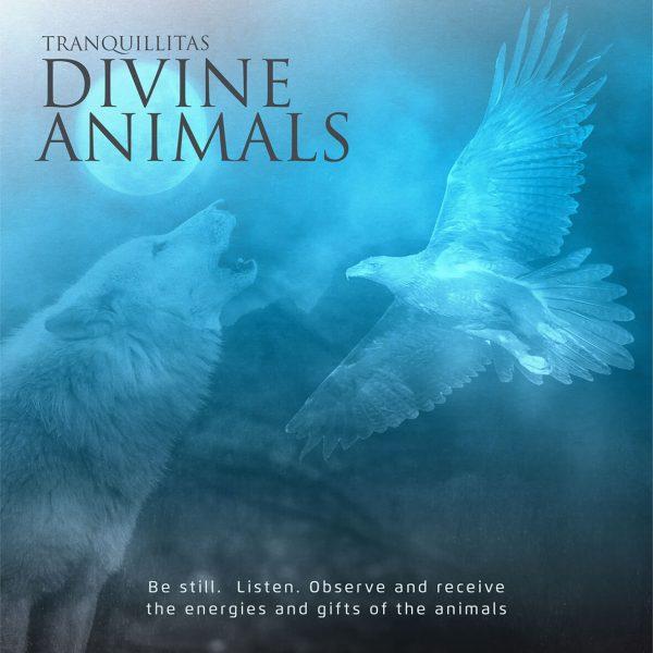 Tranquillitas Divine Animals 600x600 - TRANQUILLITAS   DIVINE ANIMALS MEDITATION